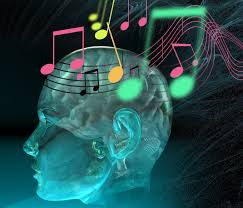 Music and Neurobiology Brain Plasticity